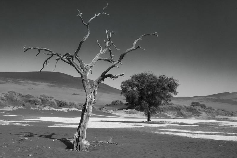 Namibian Desert-105-Edit.jpg
