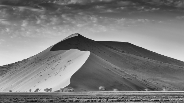 Sand Dune, Namibia by Jack Kleinman
