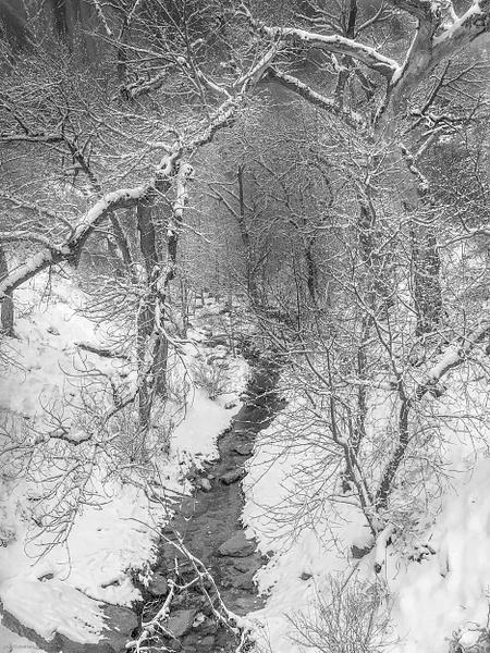 Zion Valley by Jack Kleinman