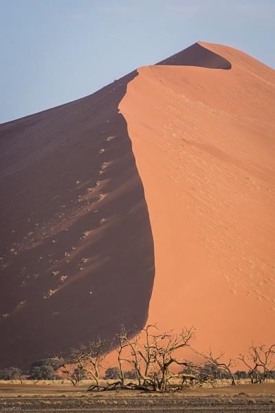 Namibian Desert-89.jpg by Jack Kleinman