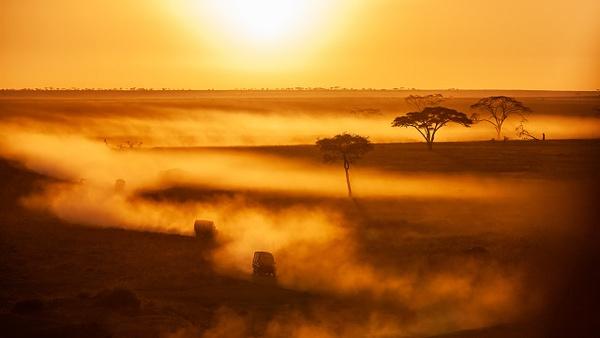Serengeti N.P. Bilila (25) - TANZANIA - François Scheffen Photography
