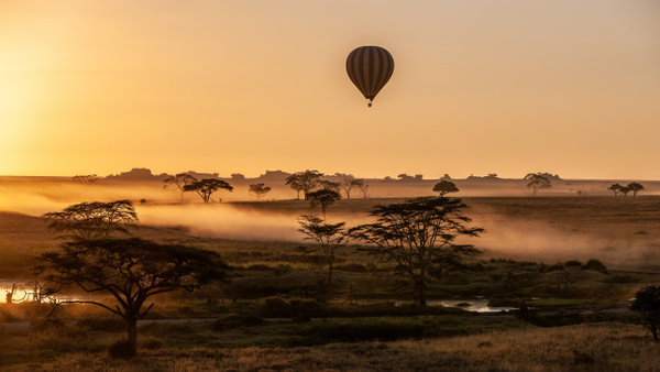 Serengeti N.P. Bilila (26) - TANZANIA - François Scheffen Photography