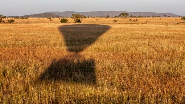 Serengeti N.P. Bilila (28) - TANZANIA - François Scheffen Photography