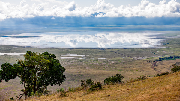 Ngorongoro Crater (26) - TANZANIA - François Scheffen Photography