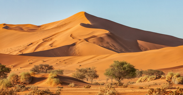 1. Sossusvlei- Deadvlei (5) - NAMIBIA - François Scheffen Photography