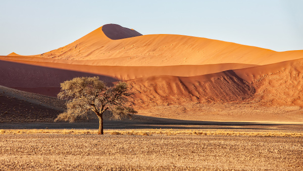 1. Sossusvlei- Deadvlei (4) - NAMIBIA - François Scheffen Photography