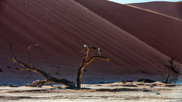 1. Sossusvlei- Deadvlei (7) - NAMIBIA - François Scheffen Photography