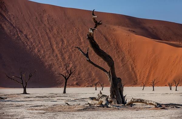 1. Sossusvlei- Deadvlei (8) - NAMIBIA - François Scheffen Photography