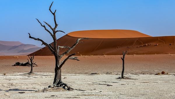 1. Sossusvlei- Deadvlei (13) - NAMIBIA - François Scheffen Photography