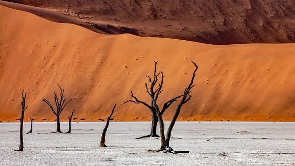 1. Sossusvlei- Deadvlei (12) - NAMIBIA - François Scheffen Photography