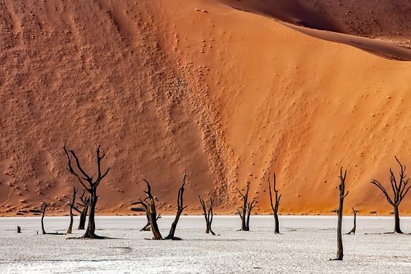 1. Sossusvlei- Deadvlei (11) - NAMIBIA - François Scheffen Photography