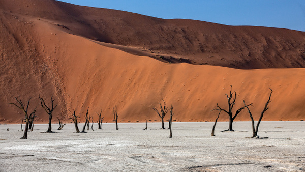 1. Sossusvlei- Deadvlei (10) - NAMIBIA - François Scheffen Photography