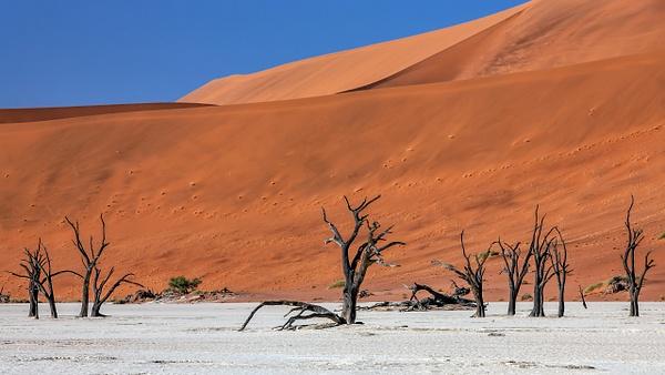 1. Sossusvlei- Deadvlei (16) - NAMIBIA - François Scheffen Photography