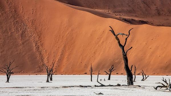 1. Sossusvlei- Deadvlei (15) - NAMIBIA - François Scheffen Photography