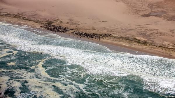2. Namib- Naukluft N. P (10) - NAMIBIA - François Scheffen Photography