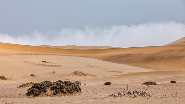 3. Swakopmund & Walvis Bay  (10) - NAMIBIA - François Scheffen Photography