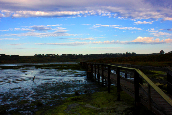 IMG_2694 by TylerBly