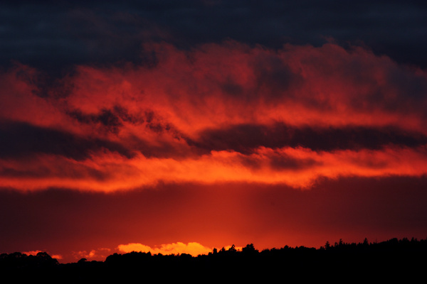 IMG_4629 by TylerBly