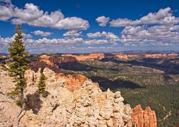 Bryce View 1 - Landscapes - Phil Mason Photography