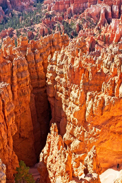 Bryce View 2 - Landscapes - Phil Mason Photography