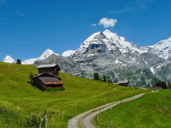 Jungfrau View - Landscapes - Phil Mason Photography