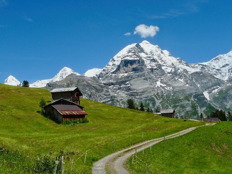 Jungfrau View