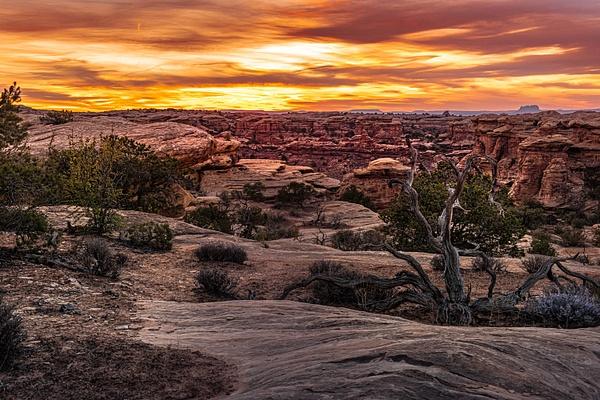 Needles Sunset-2 - Landscape - Neil Sims Photography