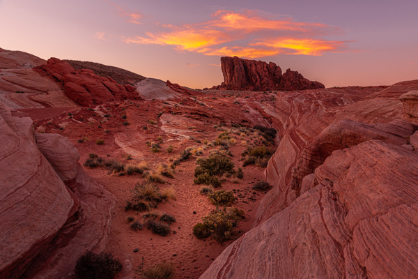 Valley of Fire-5 WEB - Landscape - Neil Sims Photography