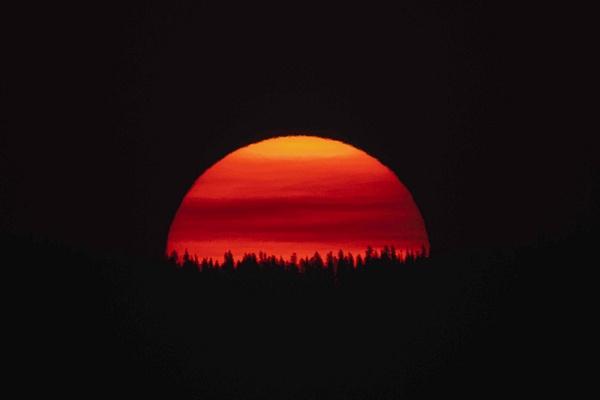 Yellowstone Mammoth Hotsprings-3768 - Portfolio - Neil Sims Photography