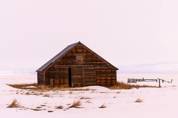 _DSC1307-Edit Wheatland 313 web - Portfolio - Neil Sims Photography