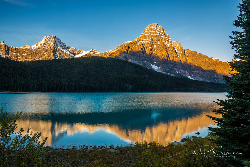 Waterfowl Lake_073A0723