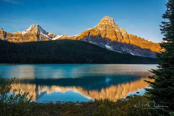 Waterfowl Lake_073A0723 - Home - Walter Nussbaumer Photography