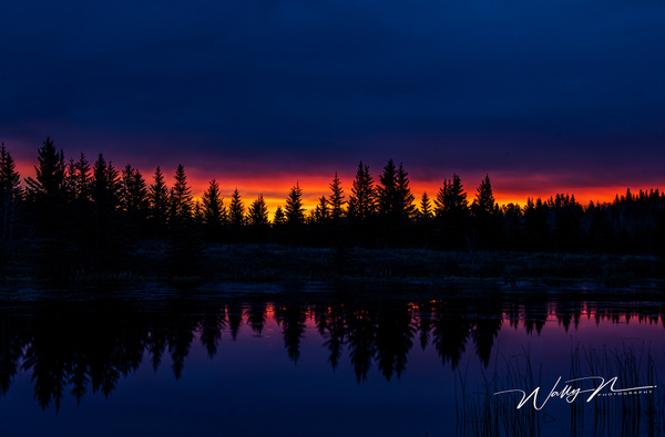 Sunrise Sibbald Trail_DSC7154 - Home - Walter Nussbaumer Photography