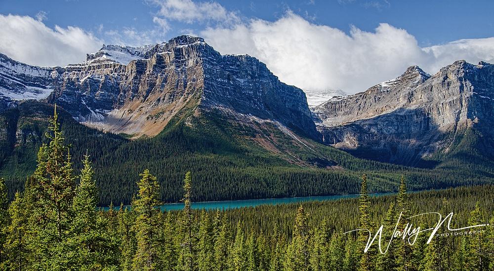 Hector Lake_DSC_5285