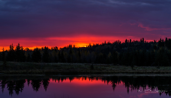 Sibbald Sunrise_073A3930 - Additional Files - Walter Nussbaumer Photography