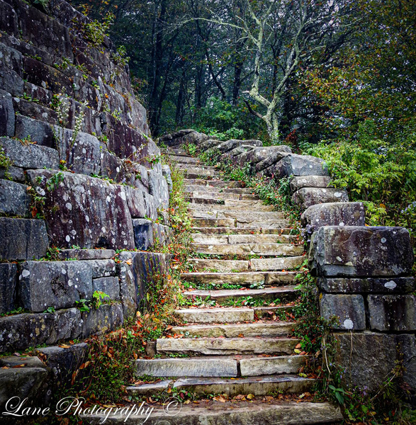 SMtNatPk Stone Steps Curved - Nature - Lane Photography