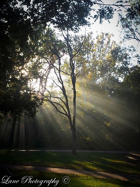 SW Smoky Sunbeams-1 - Copy - Nature - Lane Photography
