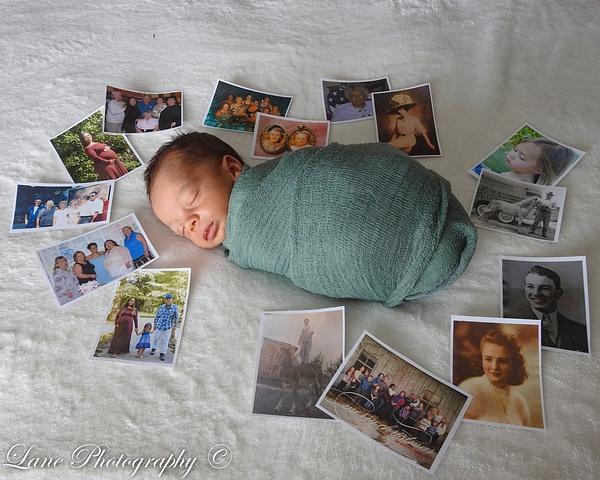 Nikki Newborn 9-9-20 8058-0858 - Newborn - Lane Photography