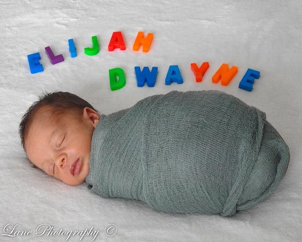 Nikki Newborn 9-9-20 8061-0861 - Copy - Newborn - Lane Photography