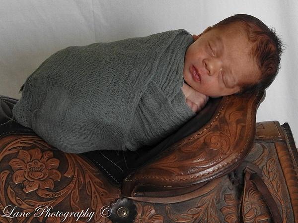 Nikki Newborn 9-9-20 8094-0894 - Newborn - Lane Photography