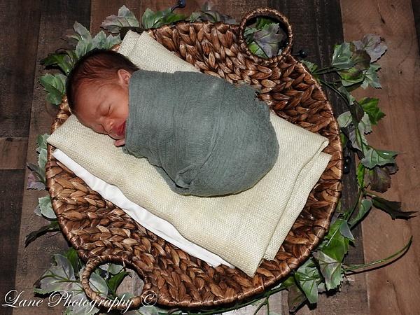 Nikki Newborn 9-9-20 8081-0881 - Newborn - Lane Photography