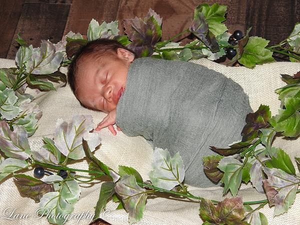 Nikki Newborn 9-9-20 8073-0873 - Newborn - Lane Photography