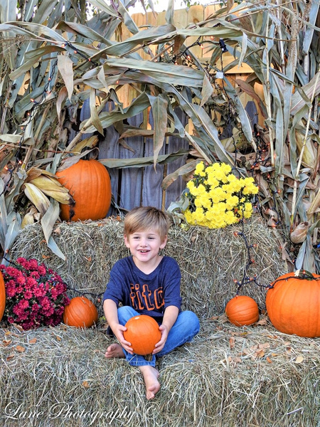 Andrew 1049-1049 (2) - Fall Mini Sessions - Lane Photography