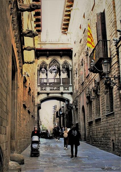 Medvl bridge - Spain - ImageN8