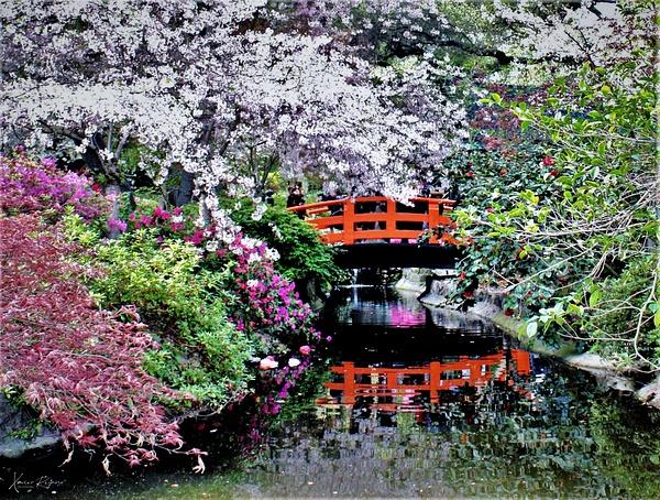 Descanso bridge - Arte - ImageN8