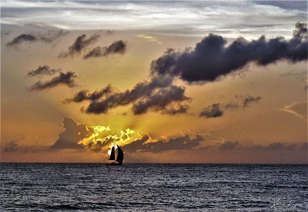 Barbados Coast - Home - ImageN8