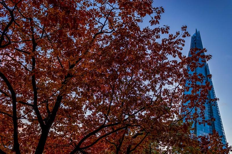 LDN Shard autumn 2415