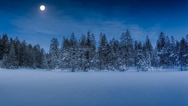 Dancing in the moonlight - Landscape - Marko Klavs Photography