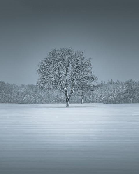 Lost In Time - Black & White - Marko Klavs Photography