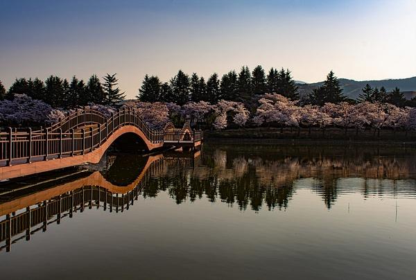 Lake Bomun South Korea - Travel - Nicola Lubbock Photography